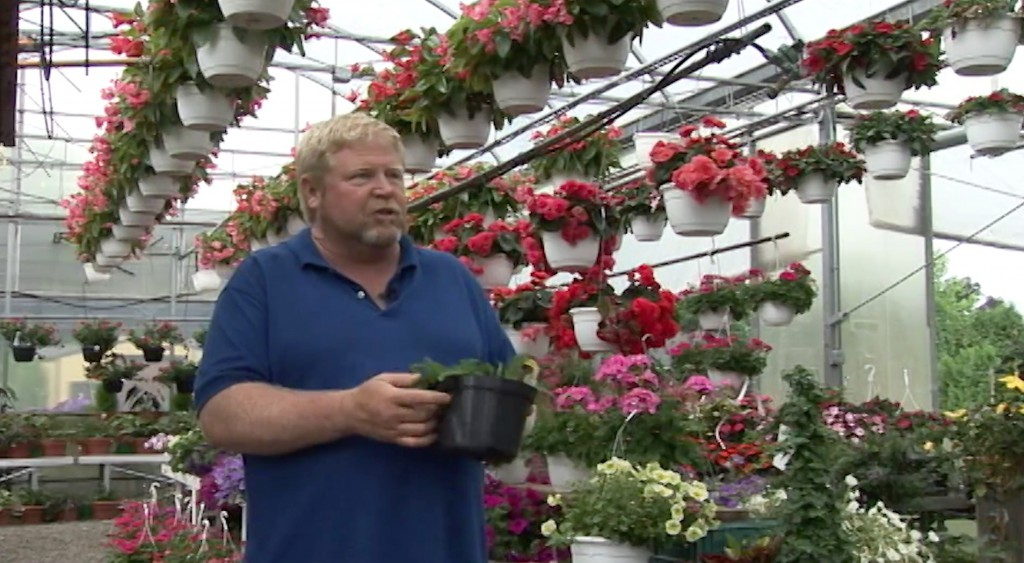 Fitkin's Greenhouse Virtual Field Trip: 6